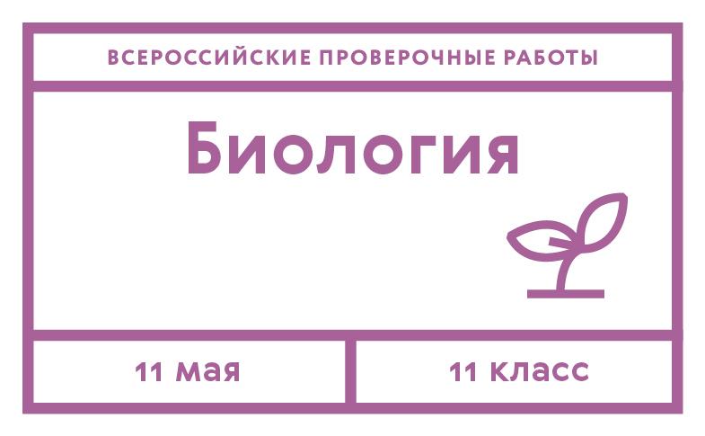 ege_biologiya31