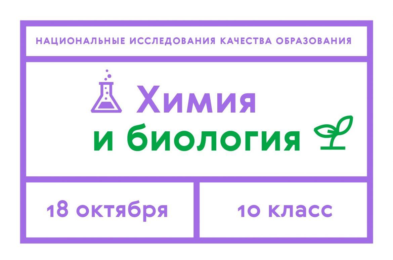 proverochnye6
